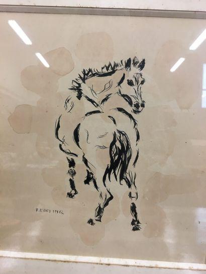 P.EBELING  Cheval  Dessin à l'encre de Chine  24 x 22 cm