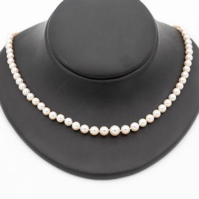 Collier un rang de perles de culture disposées...