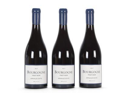 3 B BOURGOGNE PINOT NOIR Arnaud Ente 201...