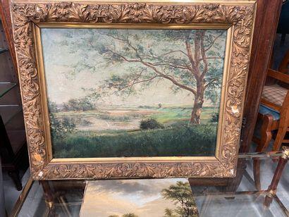 Deux huiles sur toile  Paysage  La plus grande 45 x 62 cm