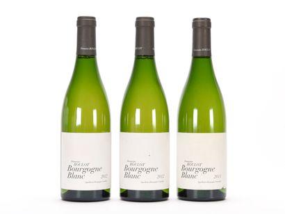 2 B BOURGOGNE Blanc (1 e.l.a.) Domaine Roulot...