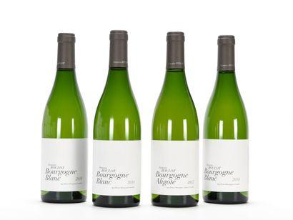 3 B BOURGOGNE Blanc Domaine Roulot 2018  1...