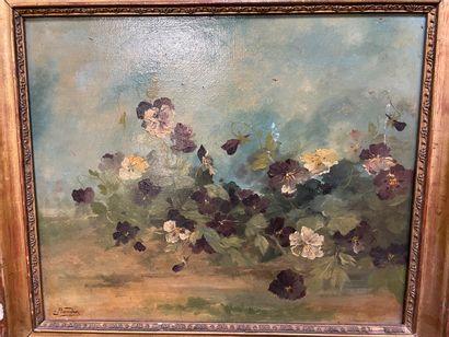 BAUDIN  Pensées  Huile sur toile  38 x 44...