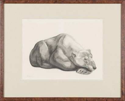 Georges-Lucien GUYOT (1885-1937) : Ours Gravure...