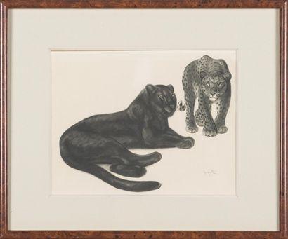 Georges-Lucien GUYOT (1885-1937) : Panthère...