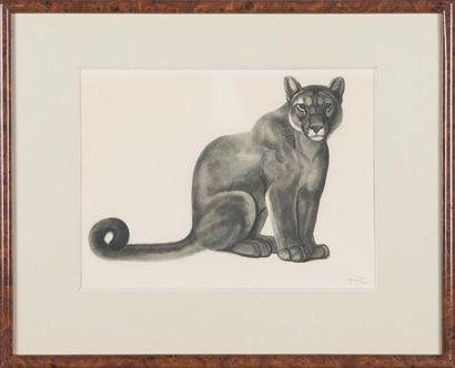 Georges-Lucien GUYOT (1885-1937) : Pumas...