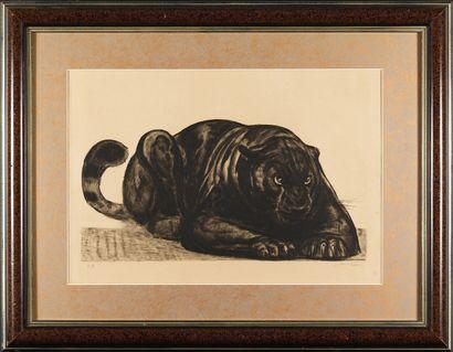 Paul Jouve Paul JOUVE (1878-1973) - Panthère noire à l'affut - Eau forte signée en...
