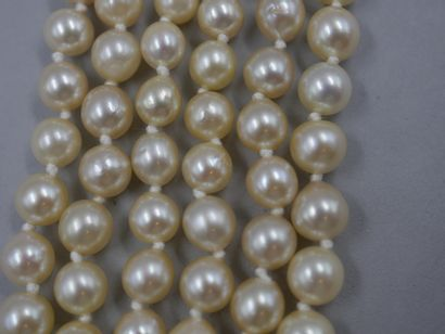 Collier de trois rangs de perles de cultures...