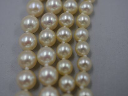 Long sautoir de perles de culture japonaises...