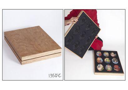 Hector OLGUIN (1970) et Cynthia AYRAL (1980).1350°C. Broches/Photographies. Ensemble...