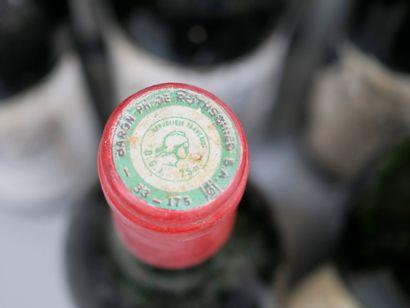15 bouteilles Bouquetin, Bordeaux, 1981