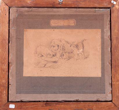 Eugène LAMBERT (1825 - 1900). Chatte et ses chatons. Dessin à l'encre. Signé en...