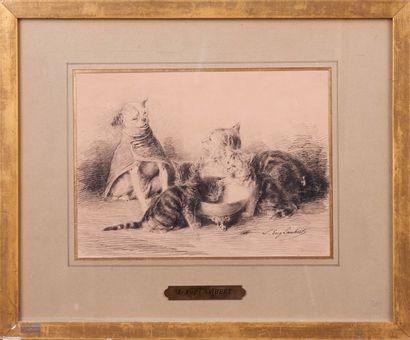 Eugène LAMBERT (1825 - 1900) . Chiens et chats. Dessin à la plume. Signé en bas...