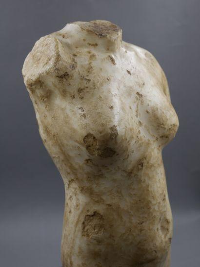 Corps de la Déesse Vénus acéphale. Manque la base. Marbre ou albâtre patiné. Style...