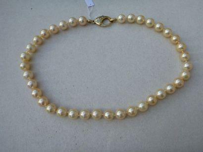 Collier de perles de culture choker orient/champagne,...