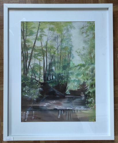"""DOSIERE Edouard """"Rivière dans les bois de la Brie"""" Pastel sur carton 50 x 40 cm signé...."""