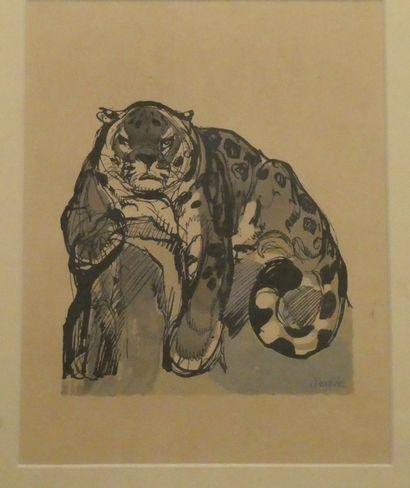 D'après Paul JOUVE (1878-1973)  Panthère  Lithographie en couleurs, signée dans...