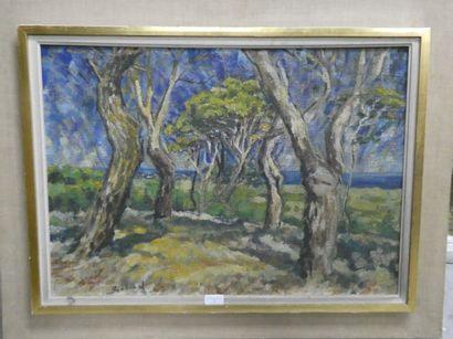 BERTRAND  Paysage de forêt  Huile sur toile...