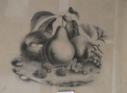 Ecole française du XIXe siècle  Deux natures...