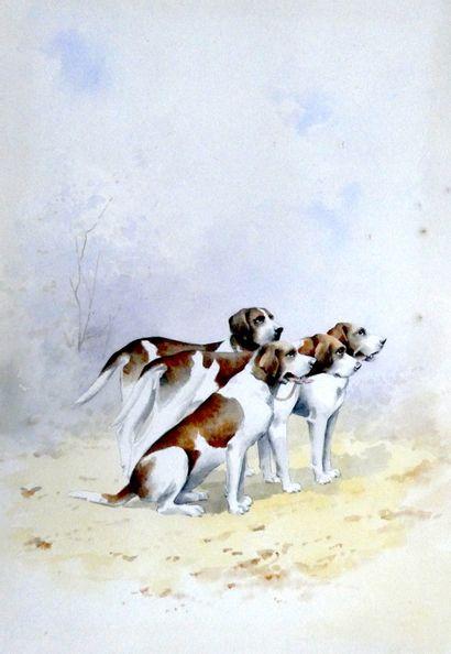 Ecole Moderne  Meute de chien  aquarelle...