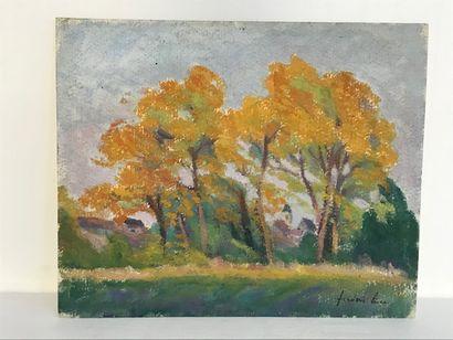 Frédéric LUCE (1896-1974)  Les grands arbres...