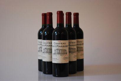 Six bouteilles de Château Haut-Marbuzet 2009,...