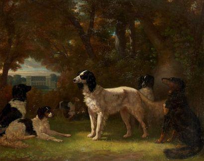 Henri Auguste DE MONTPEZAT (1817-1859) Chiens devant un château Huile sur toile signée....