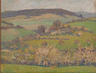 Raymond QUIBEL (1883-1978) Printemps dans la vallée. Huile sur carton signée en bas...