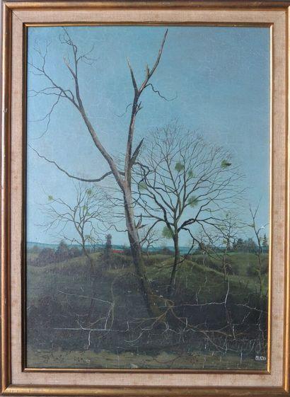 Michel BESZIE (né en 1940).  L'arbre mort....