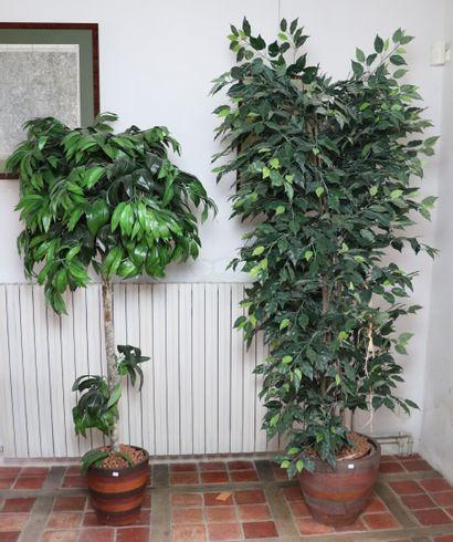 Deux plantes artificielles dans des pots...