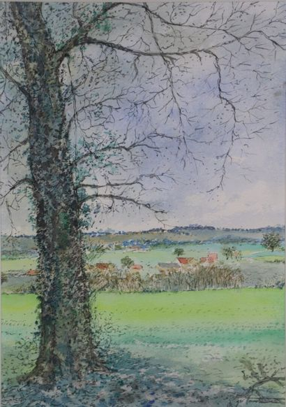 Jean William HANOTEAU (né en 1937).  Le lierre....