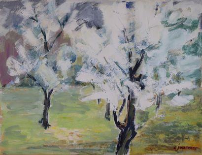 Colette JOURNIAC (1929-2005).  Les arbres...
