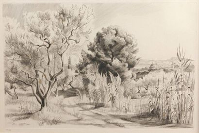 René COTTET (1902-1992)  Chemin provençal...