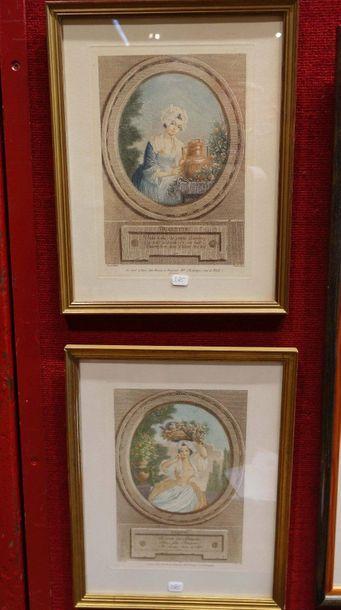 Lot de gravures couleurs Mois du calendrier Républicain, oiseaux de Gould et di...