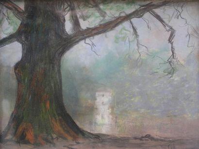 TEN CATE PIETER (1869-1937)