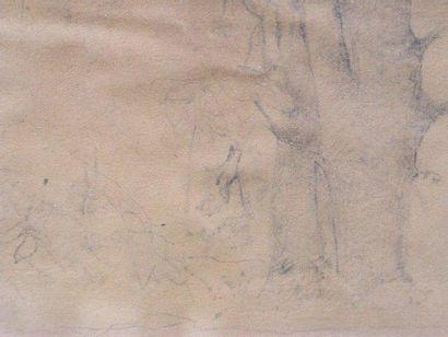 LEHMANN HENRI (1814-1882) Paysage aux arbres Crayon, cachet en bas à droite. 9x13...