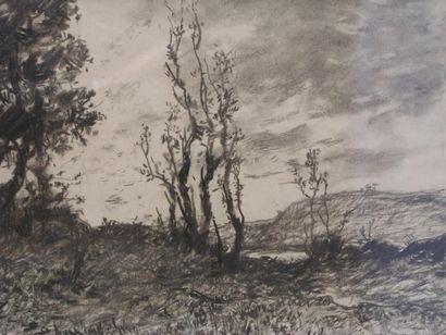 HARPIGNIES HENRI (1819-1916)