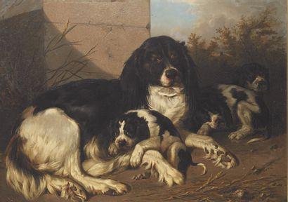 Carl Frédérik KIOBOE (1799-1876) Chienne...