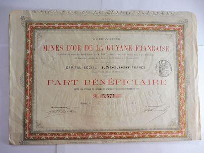 MINES D'OR DE LA GUYANE FRANCAISE; action...