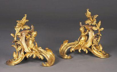 Chenets en bronze ciselé et doré à décor...