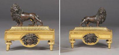 Chenets en bronze ciselé patiné et doré....