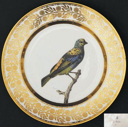 SÈVRES Assiette à décor polychrome au centre d'un oiseau posé sur une branche nommé...