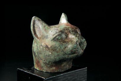 TÊTE de la chatte Bastet. Bronze. Oxydation verte. Egypte, époque Saïte. H. 7 c...