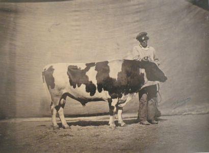 Félix NADAR (1820 -1910)