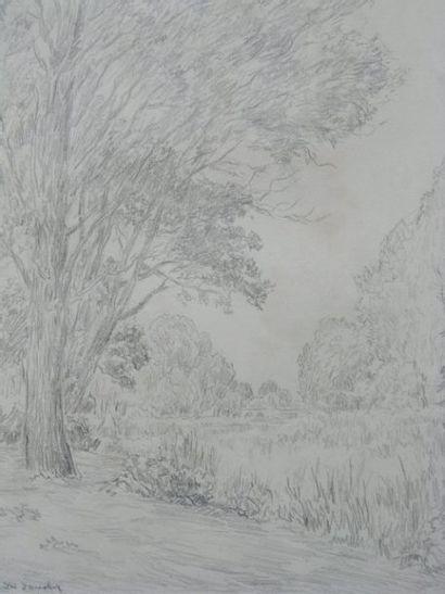 DAUCHEZ ANDRÉ (1870-1943) Bord de rivière Crayon, signé en bas à gauche. 34x17cm