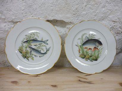 SERVICE A POISSON 18 assiettes plates décor...