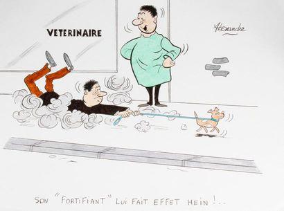 ALEXANDRE. «Vétérinaire. Son fortifiant...