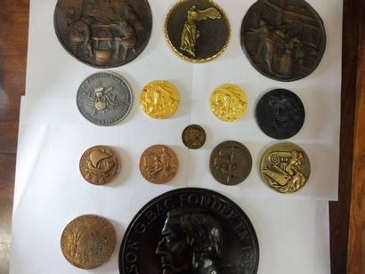 15 MEDAILLES en bronze