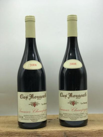 2 bouteille s Saumur-Champigny