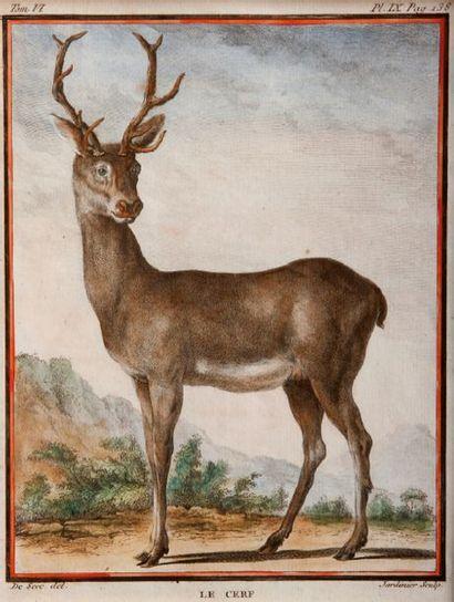 D'après Jacques Eustache DE SEVE (actif 1742-1788)